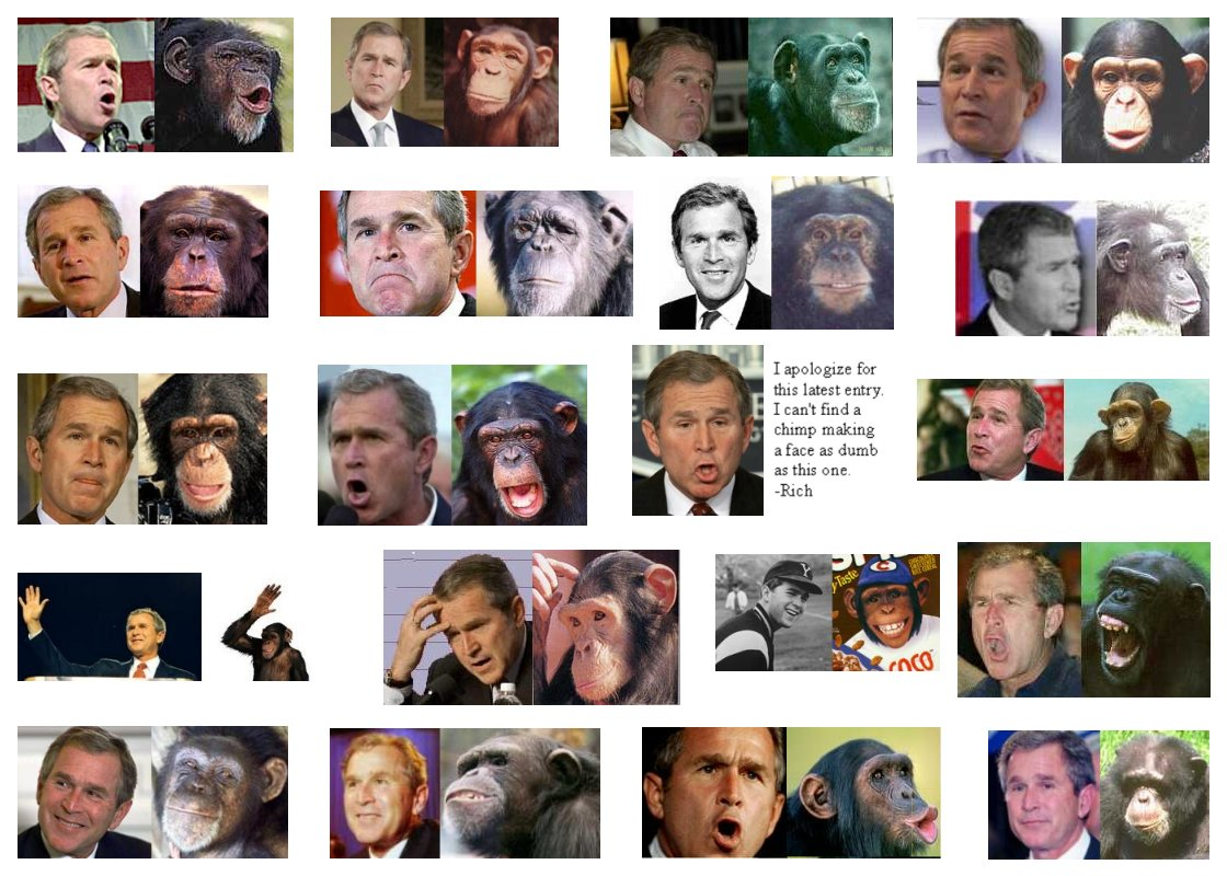 http://www.miroweb.com/fun/funniest-images-gallery/GW-bush-chimpanzee.jpg